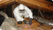 insulation-batt-removal-perth